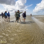 "2018-augustus-excursie SBB naar Rotummeroog • <a style=""font-size:0.8em;"" href=""http://www.flickr.com/photos/29476293@N05/29873243507/"" target=""_blank"">View on Flickr</a>"