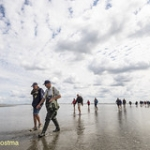 "2018-augustus-excursie SBB naar Rotummeroog • <a style=""font-size:0.8em;"" href=""http://www.flickr.com/photos/29476293@N05/29873243727/"" target=""_blank"">View on Flickr</a>"